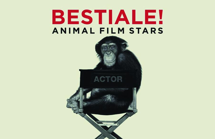 Donata Pesenti Campagnoni - Animal Film Stars